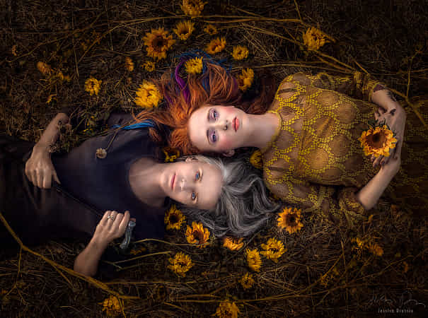 Full Circle by Jessica Drossin - 丨Vanechow Blog a No.1from shop.vanechow.com