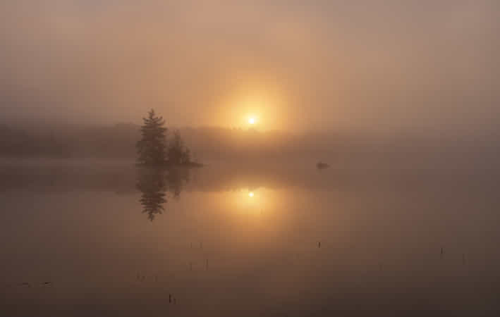 Misty morning by Rune Askeland - 丨Vanechow Blog a No.1from shop.vanechow.com