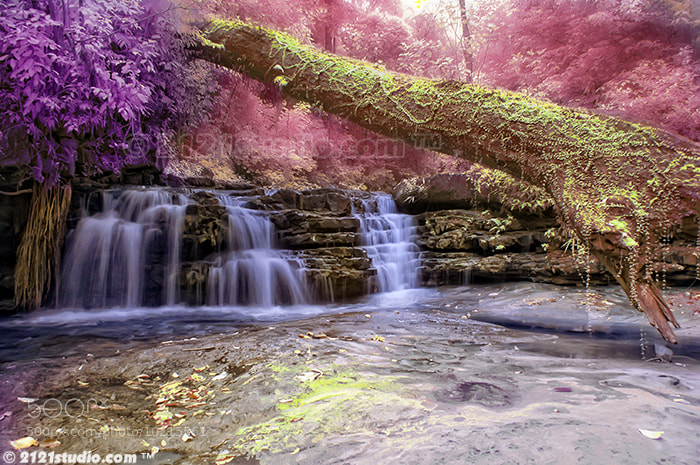 Photograph Wonderland @ Batu Hampar Waterfall (Infrared) by dR ali Shamsul Bahar on 500px