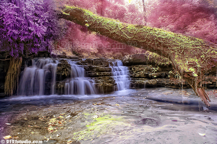 Photograph Wonderland @ Batu Hampar Waterfall (Infrared) by Ali Shamsul Bahar on 500px