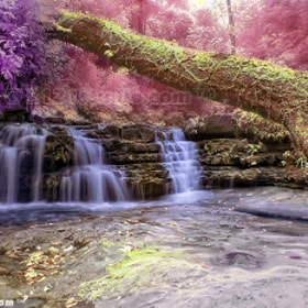 Wonderland @ Batu Hampar Waterfall (Infrared) by dR ali Shamsul Bahar (2121studio)) on 500px.com