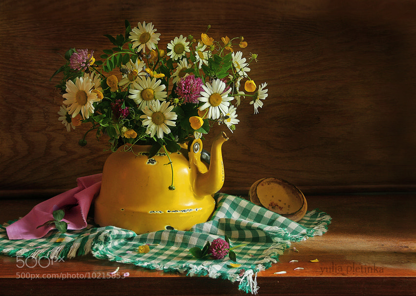 Photograph summer flowers by Yulia Pletinka on 500px