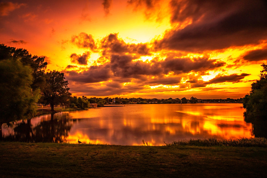 Explosion of Color by Peter B. Nyren on 500px.com