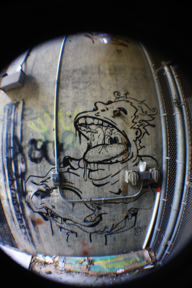 Photograph Campus Graff by Bill Gies on 500px