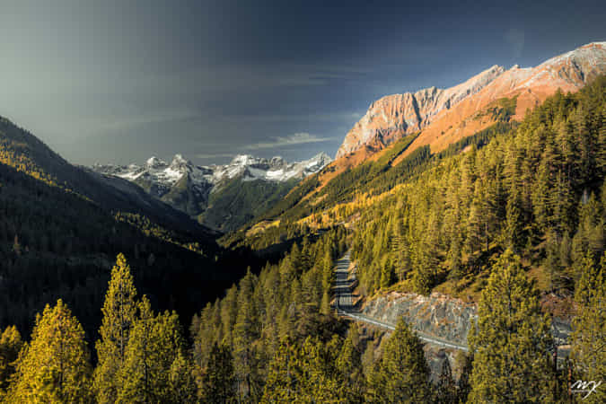 INTO THE MOUNTAINS by Michael J. Kochniss