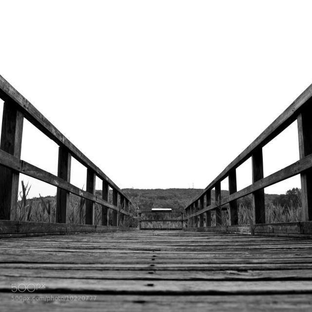 Photograph Bridge by Ergon76 on 500px