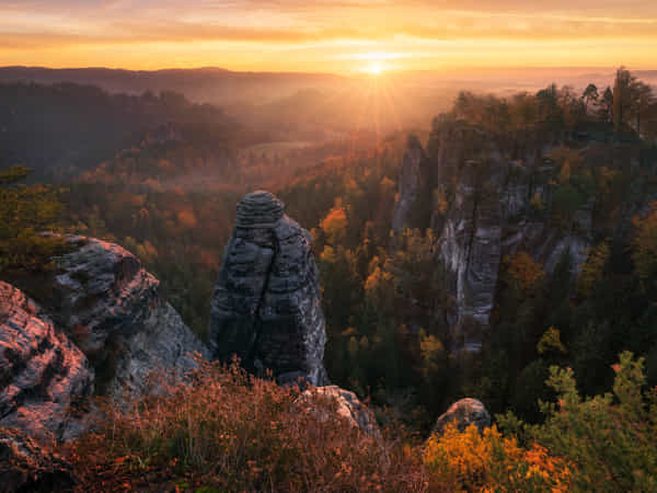 Fall Paradise by Daniel Gastager
