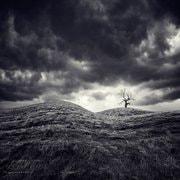 Photograph -_-' by Indra Thunderclupwafafi on 500px