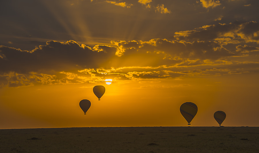 Balloon Ride during the Sun Rise. by Afzal Karim on 500px.com