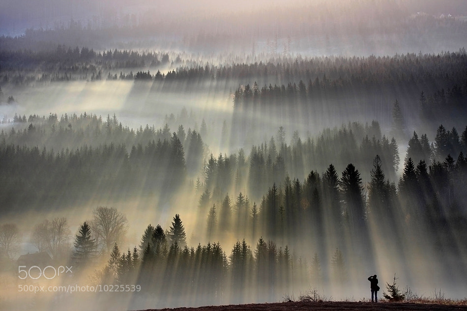 Photograph My friend bsk by Boguslaw Strempel on 500px