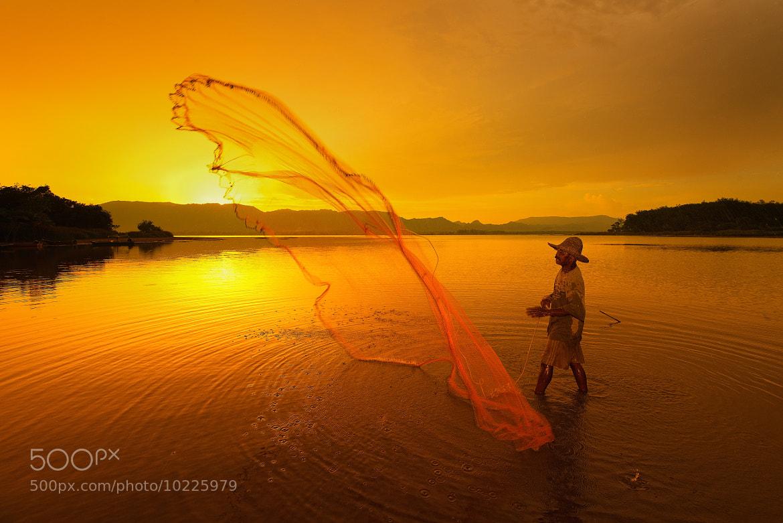 Photograph The Sun Catcher  by Arif  Kaser on 500px