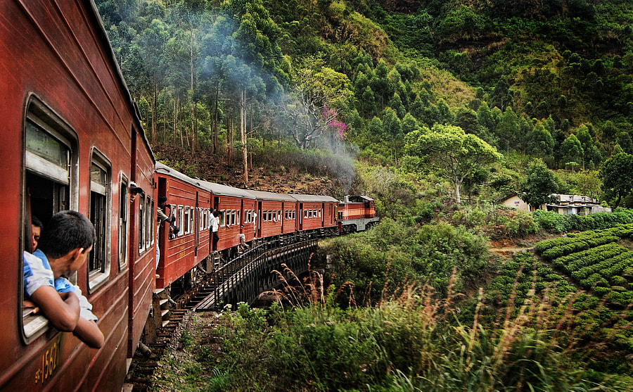 Sri Lankan Train Ride by Greg Goodman - AdventuresofaGoodMan.com on 500px.com