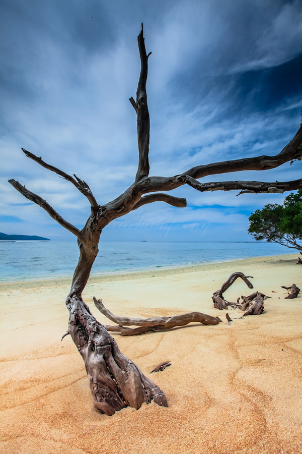 Photograph Hidden Paradise by Rose Kampoong on 500px