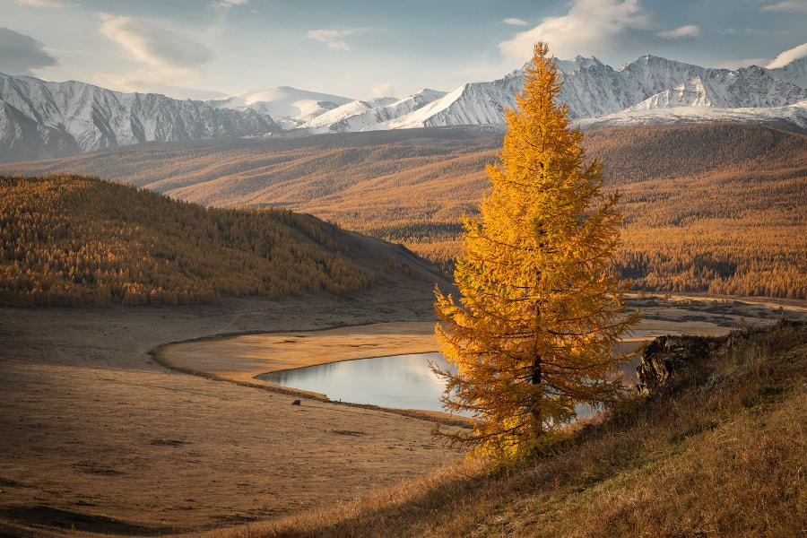 Lost Lake by Alex Guriev on 500px.com
