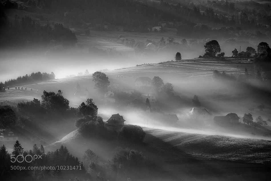 Photograph The morning light by Boguslaw Strempel on 500px