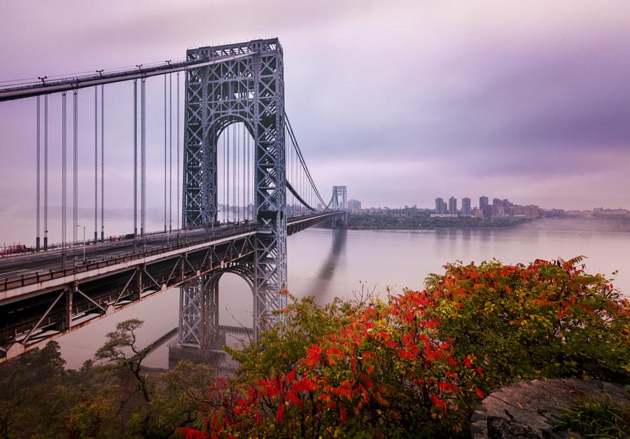George Washington Bridge In Autumn  by David Dai on 500px.com