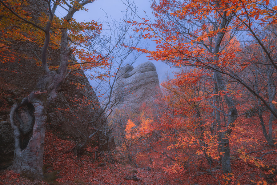 Autumn at Walley of Ghosts by Kirill Volkov on 500px.com