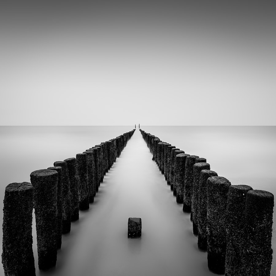 Still standing by Christophe Staelens on 500px.com