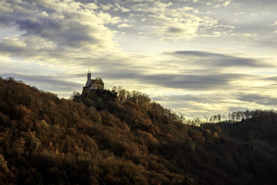 Autumn Light by Thomas Buchmann on 500px.com