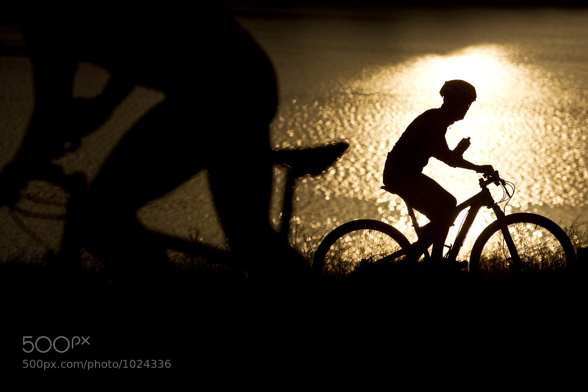 Photograph Mountain Bike Silhouette by Andrew Dickinson on 500px