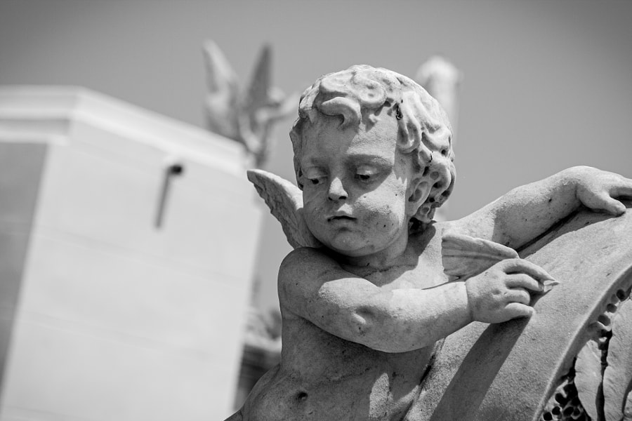 Hanging Angel by Milo Denison on 500px.com