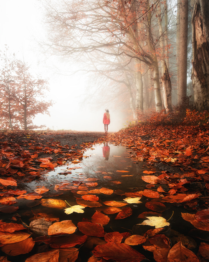 The season of the soul. by Tomas Havel on 500px.com