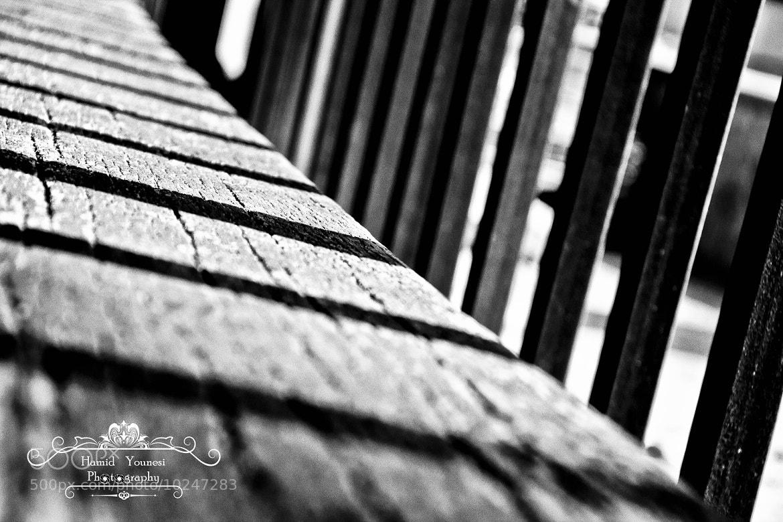 Photograph Shadows by Hamid Younesi on 500px