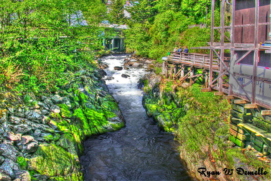 Photograph A Little river Running Thru Ketchikan by Ryan Demello on 500px