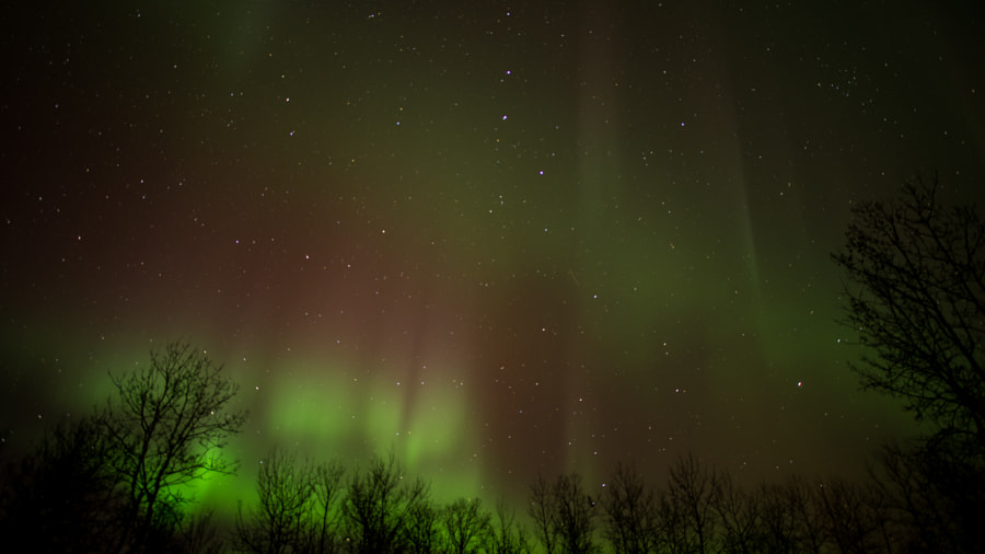 Photograph aurora borealis by Geoff Rempel on 500px