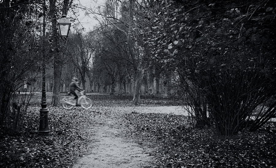 Biker by Aleksander galex Grzelak on 500px.com