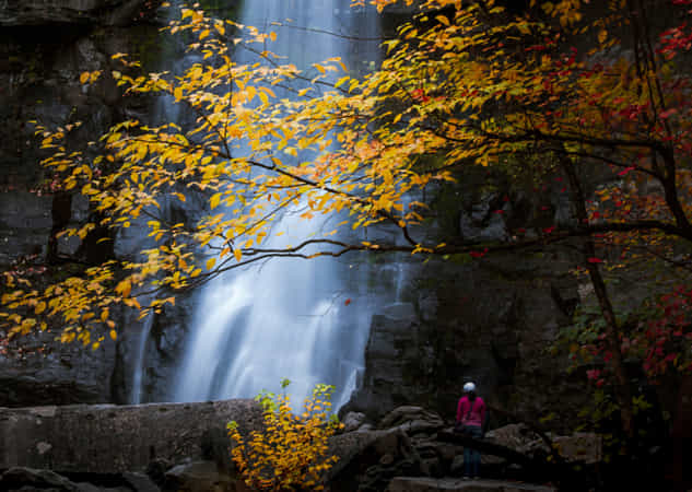 Kaaterskill Falls in Autumn by David Dai
