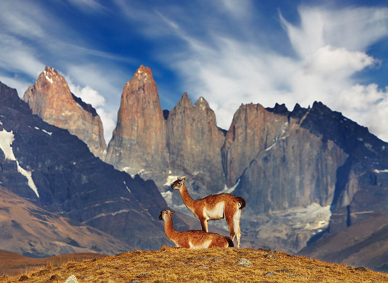 Torres del Paine by Dmitry Pichugin on 500px.com