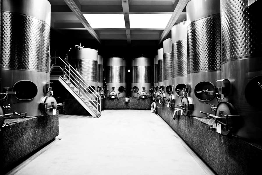Photograph Darioush Winery (Vat Room) by MacesPlaces on 500px