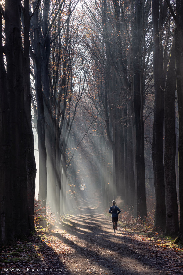 Running in the light  by Bart Ceuppens on 500px.com