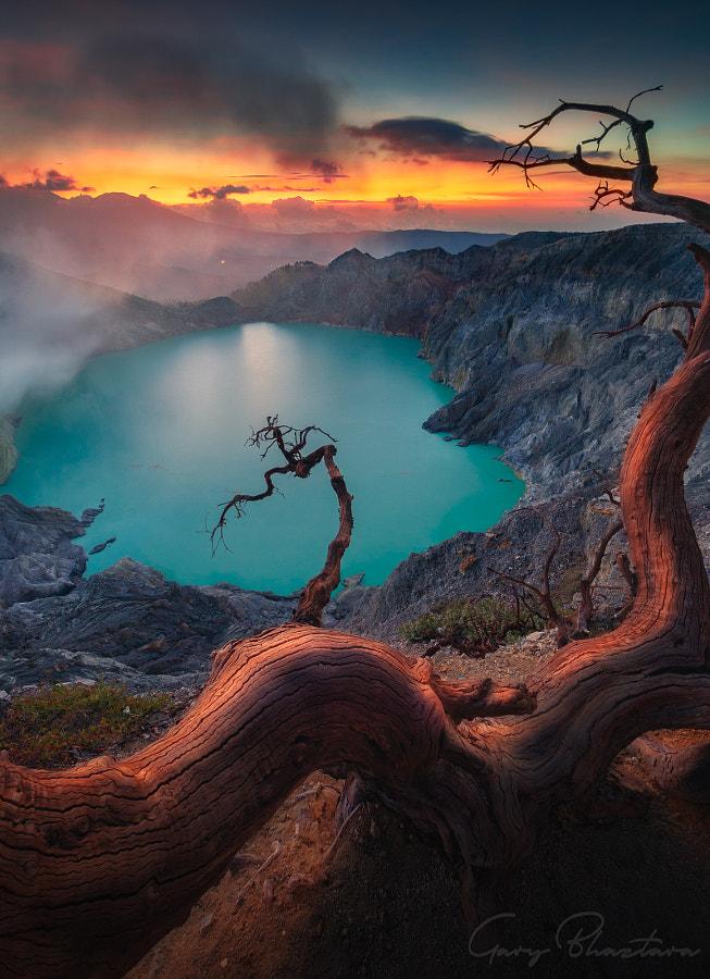 Deadtrees & Sunset by Gary Bhaztara on 500px.com