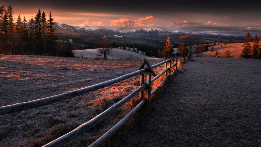 Frosty morning by Tomasz Rojek on 500px.com