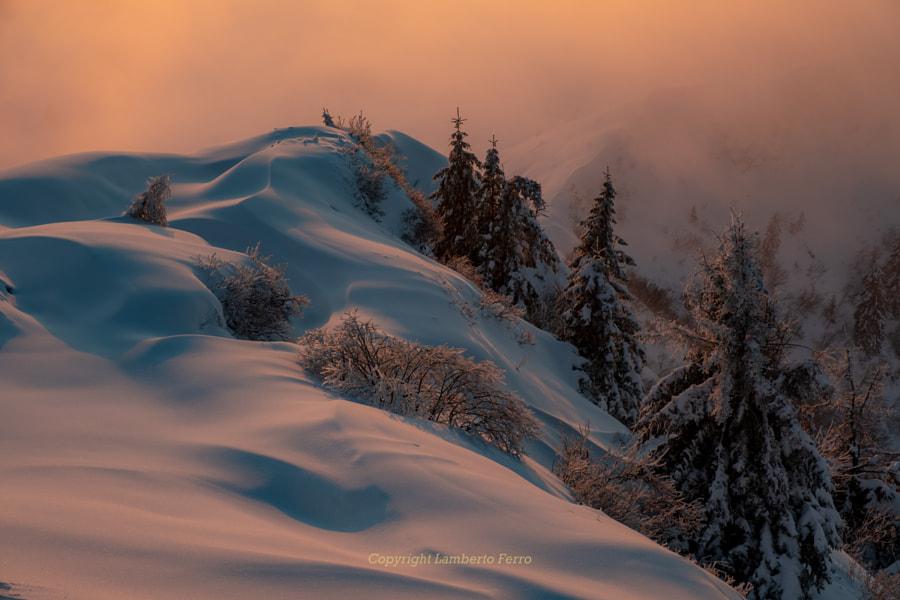 Monte Grappa by Lamberto Ferro on 500px.com