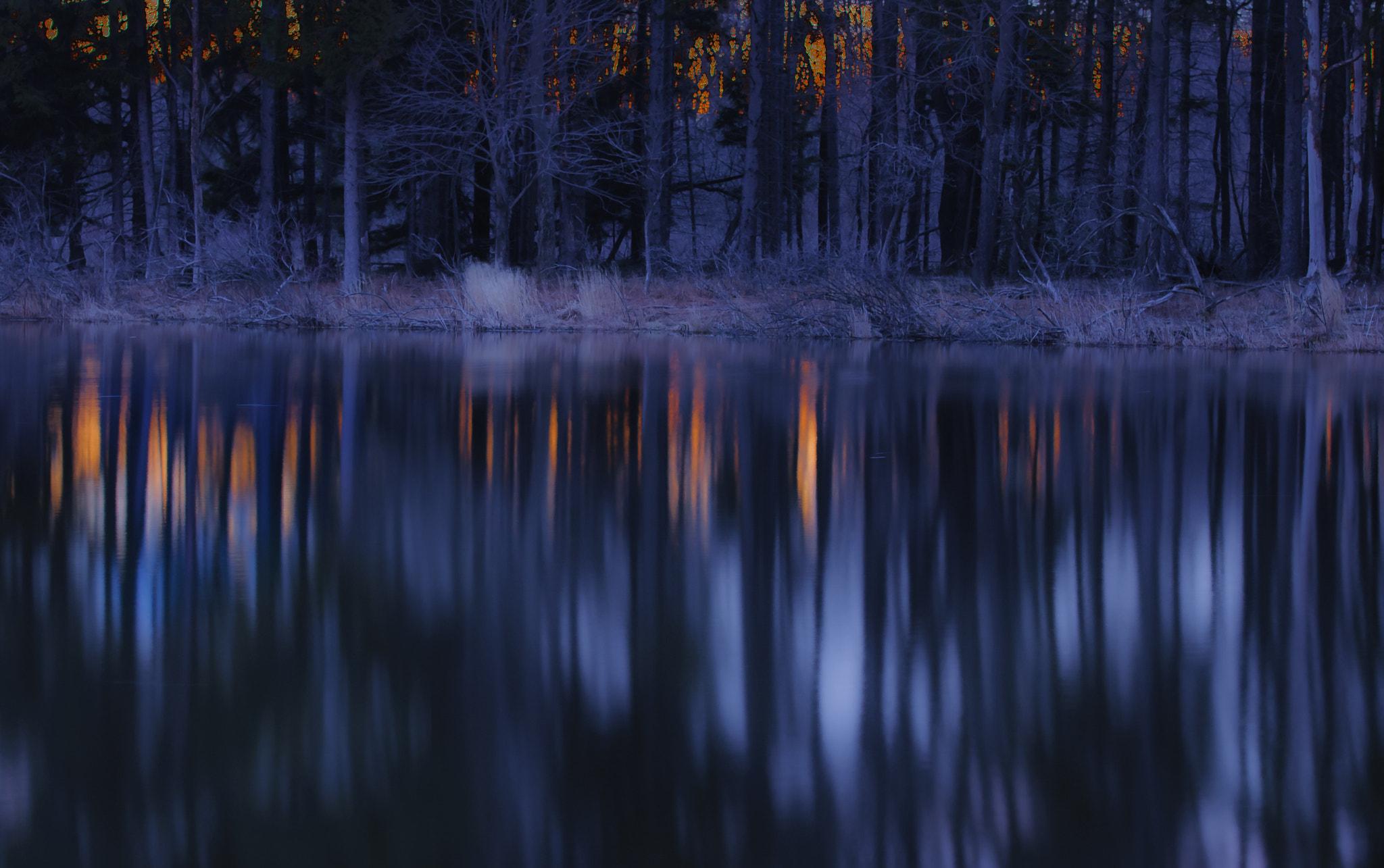 Morning Glow on Pond