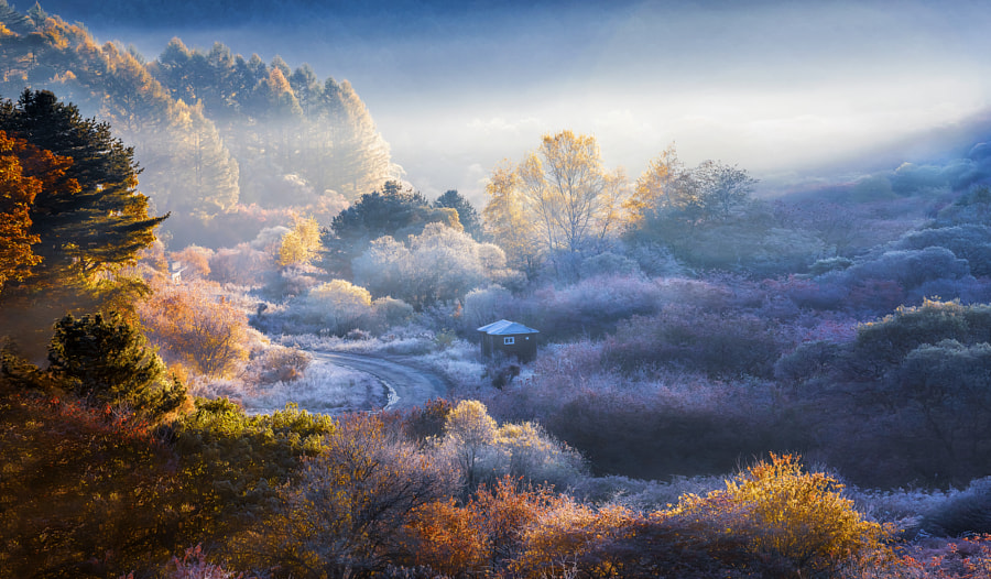 in the autumn dawn valley when the light falls by Sung Hwan Lee on 500px.com