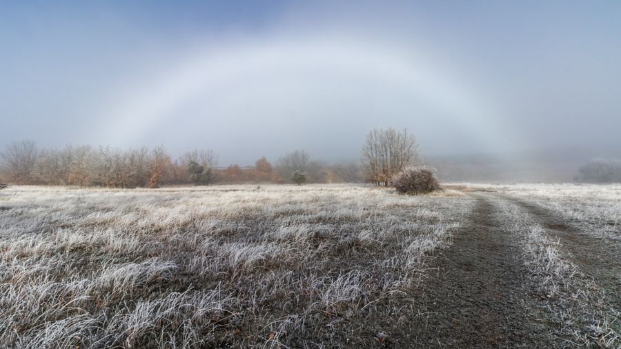 Rainbow in the mist by Jose Miguel Sanchez on 500px.com