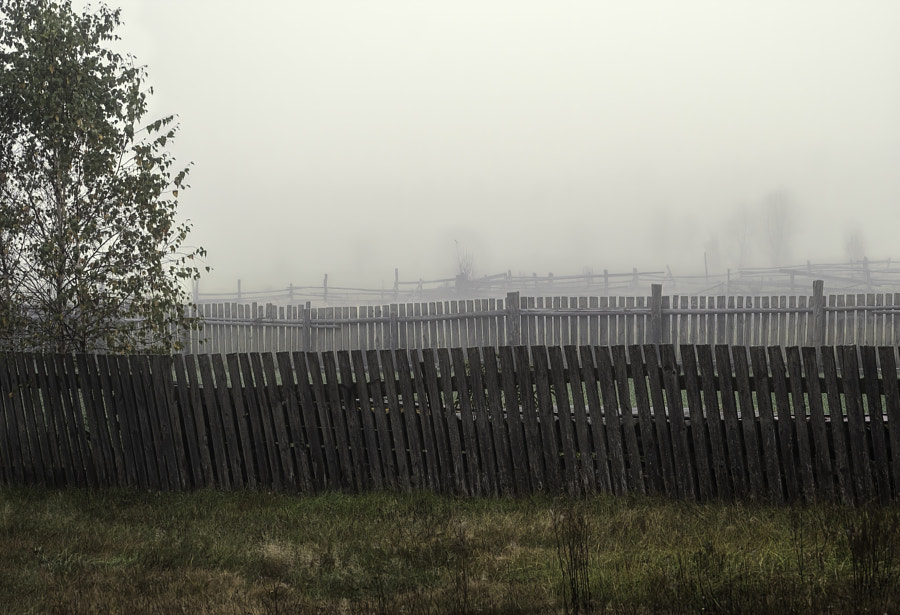 fences in the fog by Janusz Kanabus on 500px.com
