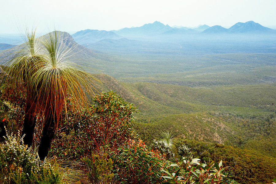 The Stirling Ranges by Paul Amyes on 500px.com