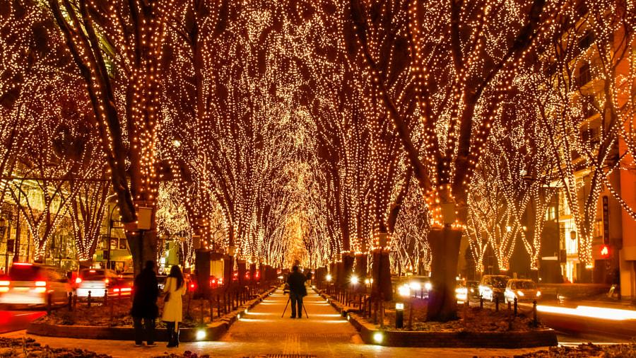 illumination by Syuzo Tsushima on 500px.com