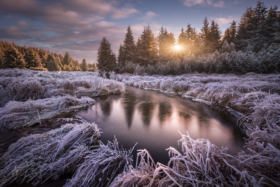 Frosty morning at the creek... by Daniel Řeřicha on 500px.com