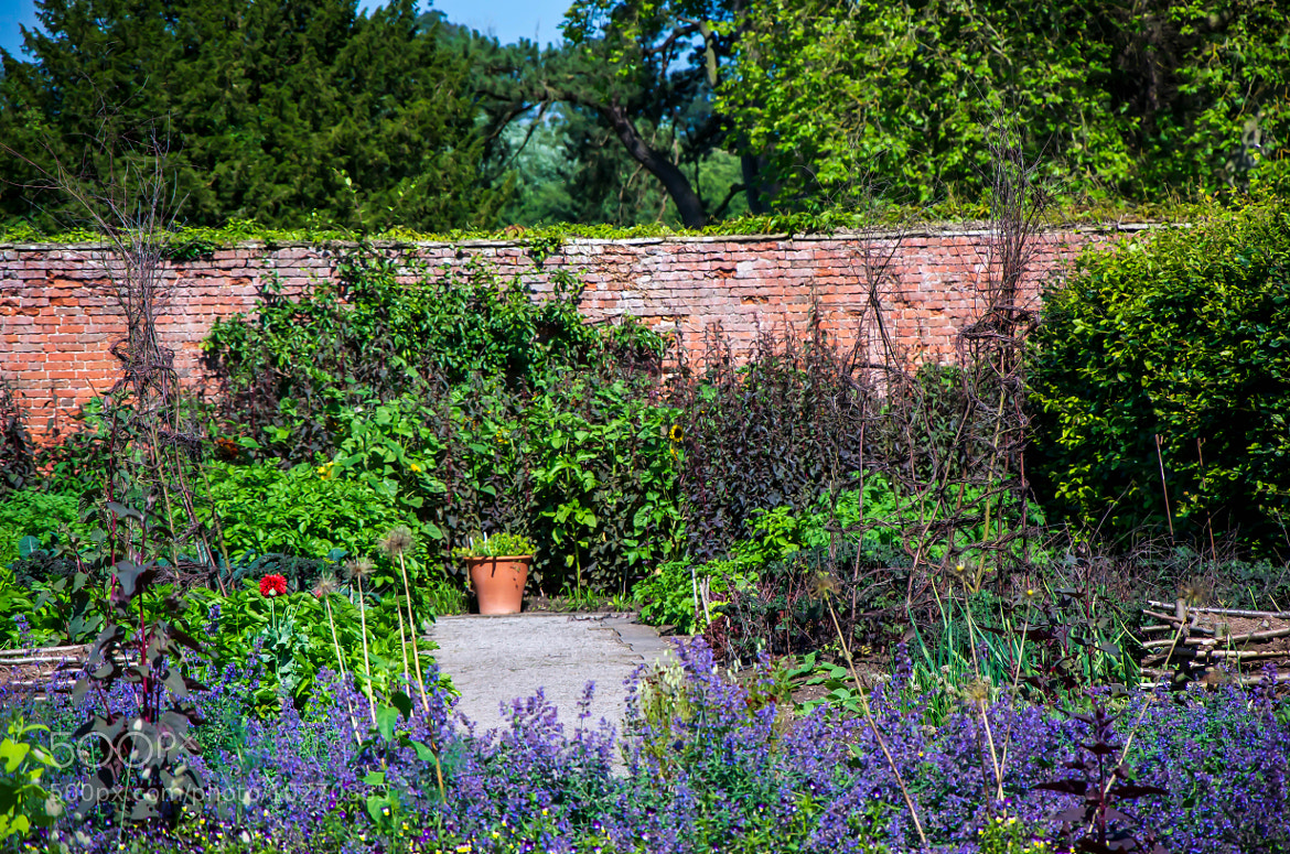 Photograph Walled Garden by julian john on 500px