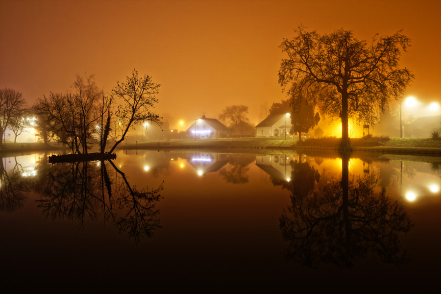 Park landscape in fog. by Geebeez Image - Guillaume B  on 500px.com