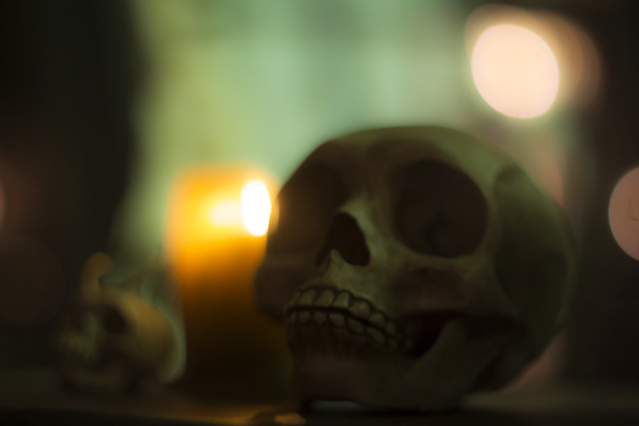 Photograph Skull by Jeff Carter on 500px