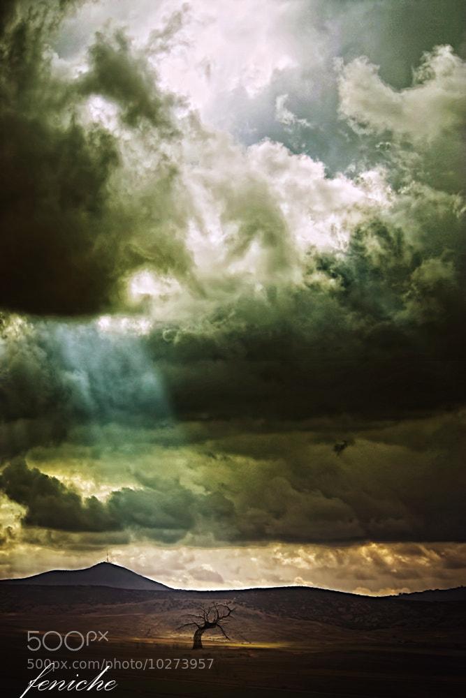 Photograph el rayo by feniche  fernando on 500px