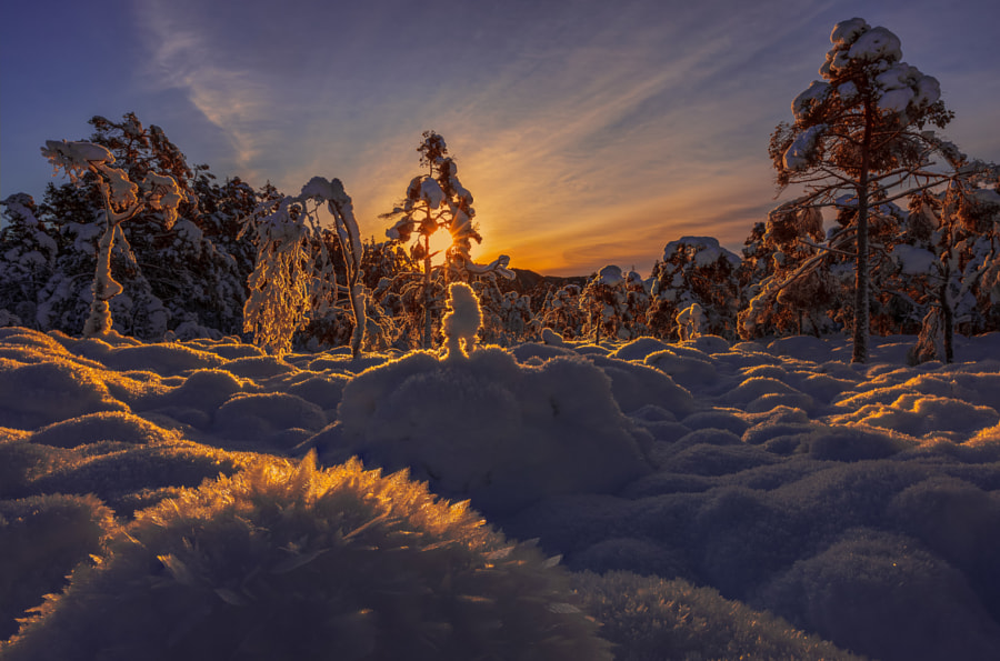 Frozen by Rune Askeland on 500px.com