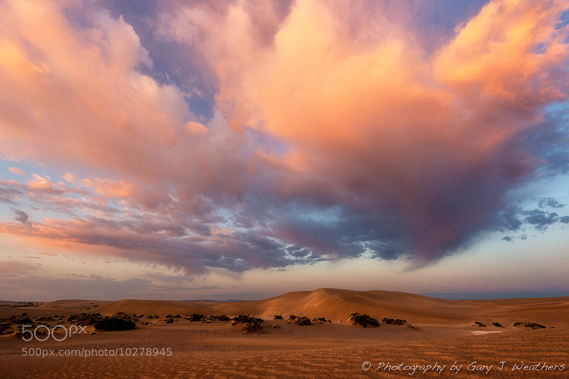 Photograph Christmas Vally Dunes by Gary Weathers on 500px